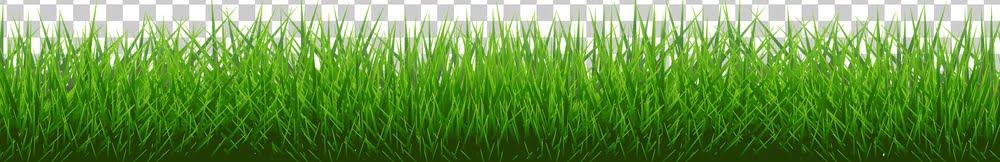 perfect grass long